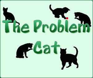 The Problem Cat